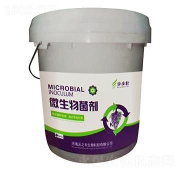 微生物菌剂-步步壮-恒绿植物