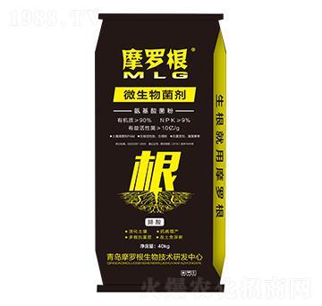 微生物菌劑(氨基酸菌粉)-摩羅根-康華生物