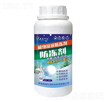 植物抗寒防冻剂-英普叶润