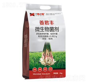 枯黄萎、根腐、根肿、茎腐、姜瘟抑菌剂(大姜专用)-顺之顺