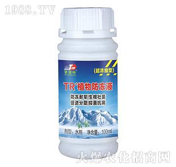 超浓缩型TR+植物防冻液-天叶生物