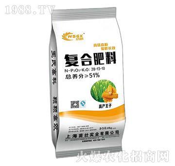 复合肥料28-13-10-苗壮实业
