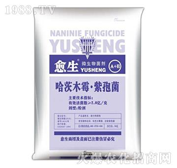哈茨木霉・紫孢菌-愈生