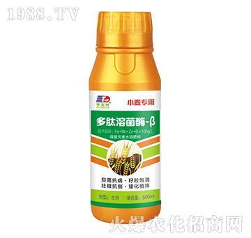 小麦专用多肽溶菌酶-β