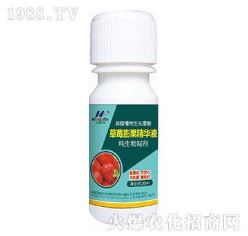 纯生物制剂-草莓膨果精