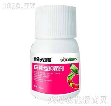 白粉型抑菌剂-粉无踪-硕达