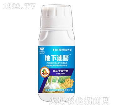 大蒜生姜专用-地下速膨-沃亿佳