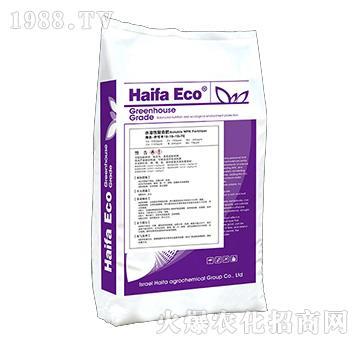 水溶性復合肥19-19-19+TE-伊可豐-海法