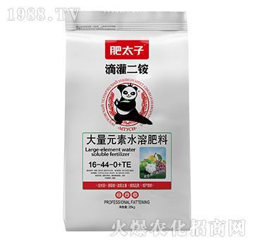 大量元素水溶肥料16-44-0+TE-滴灌二銨-肥太子