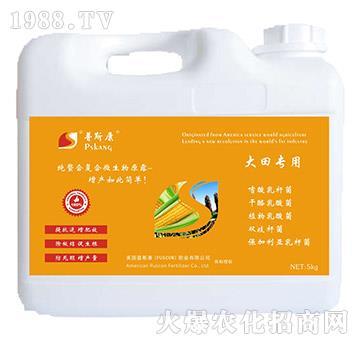 大田专用微生物菌剂-普