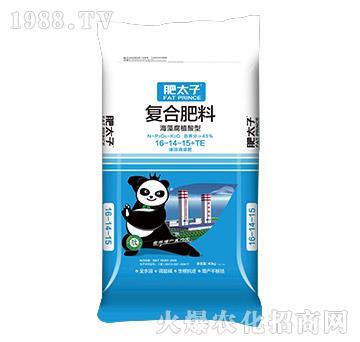海藻腐殖酸型復合肥料16-14-15+TE-肥太子