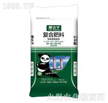 海藻腐殖酸型复合肥料18-18-18+TE-肥太子