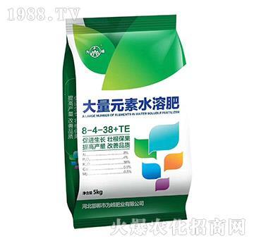 大量元素水溶肥8-4-38+TE-为峰
