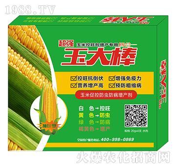 玉米促控防蟲防病增產劑-玉大棒-康豐農業