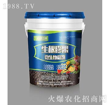 微生物菌剂-生根膨果-施耐力