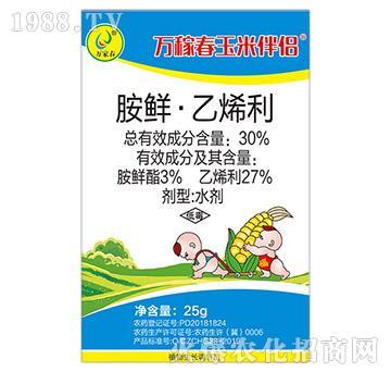 30%胺鲜・乙烯利-玉米伴侣