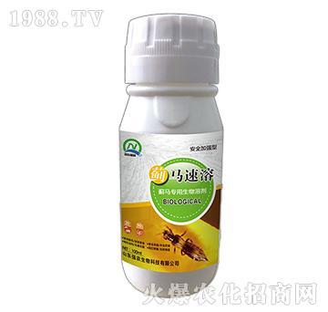 薊馬專用生物溶劑-薊馬速溶-強農生物