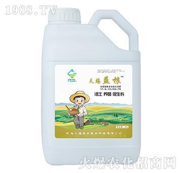 含腐殖酸多功能水溶肥11-6-13+HA+TE-天賜益根-天賜鼎立