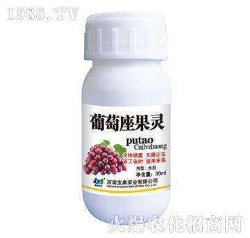 葡萄座果灵-宝典实业