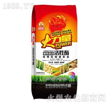 植物蛋白活性酶-大力量-奧豐肥業