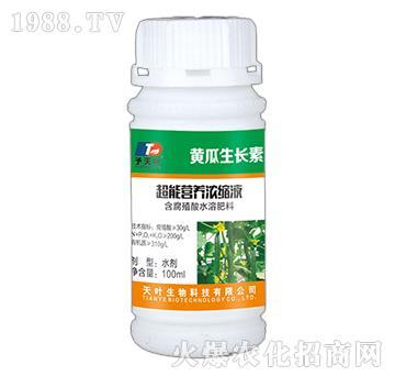 超能营养浓缩液-黄瓜生长素-天叶生物