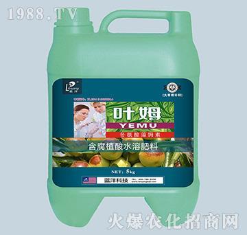 冬氨酸藻姆菌素-大枣根