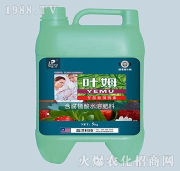 冬氨酸藻姆菌素-草莓根