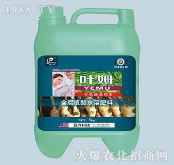 冬氨酸藻姆菌素-生姜根