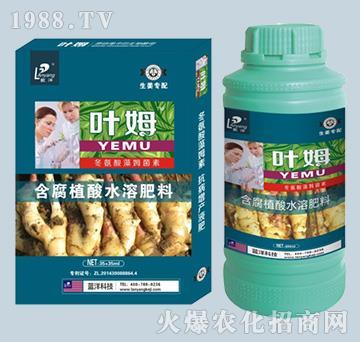 冬氨酸藻姆菌素-生姜专配-叶姆