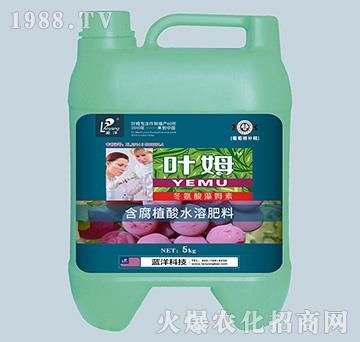 冬氨酸藻姆菌素-葡萄根