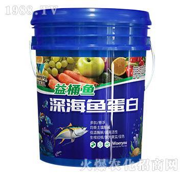深海魚蛋白-益桶魚-沃爾優