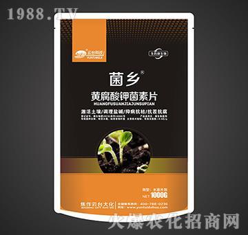 黄腐酸钾菌素片-菌乡-