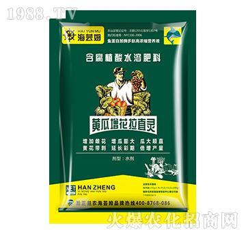 含大量元素水溶肥料-黄