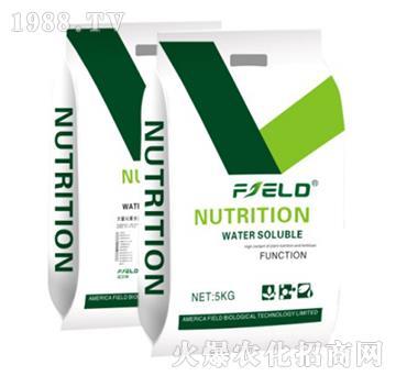 超氮绿叶型大量元素水溶31-10-10+TE-菲尔特