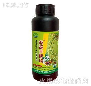生物活性流体硅-海藻多