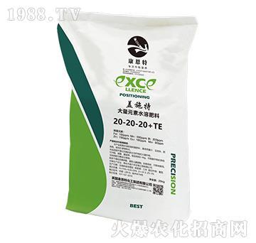 大量元素水溶肥料20-20-20+TE-盖施特-康恩特