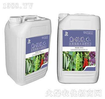 含腐殖酸水溶肥料II-勤投液禾-地康源生物
