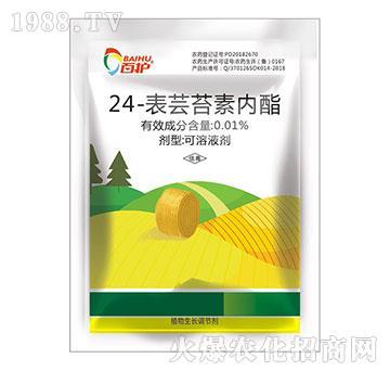 24-表芸苔素内酯-百护