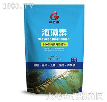 海藻素-根之道