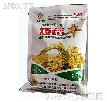 水稻分蘖抗倒撒施肥(768克)-矮稻丰-绿农鸿业