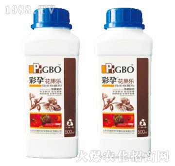 辣椒座果冲施型微生物菌剂-花果乐-彩孕-民德利华