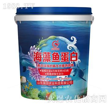 海藻魚蛋白-宸田農業