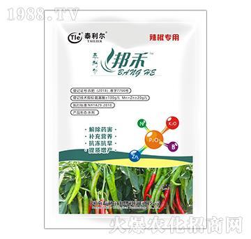 辣椒专用氨基酸水溶肥料