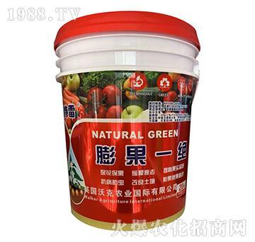 含腐植酸水溶肥料-膨果一绝-阿特雷-沃克农业