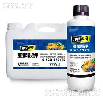 亚磷酸钾0-520-370+TE-邦保传奇-邦保肥业