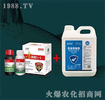 病毒1+1+氨基寡糖素-艾绿农