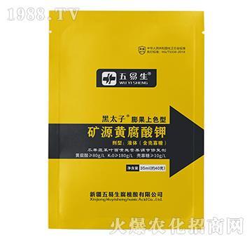 膨果上色型礦源黃腐酸鉀-黑太子-五易生