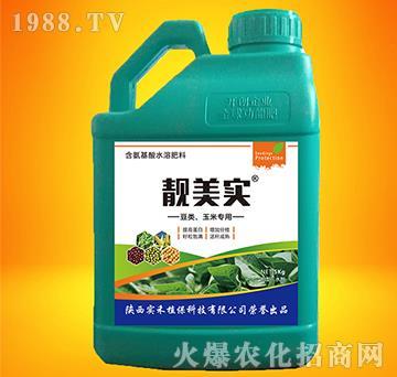 豆类玉米专用含氨基酸水溶肥-靓美实-实禾