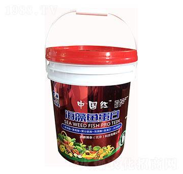 海藻魚蛋白-泓成沃豐