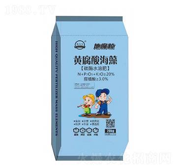 黄腐酸海藻(碳酶水溶肥)-沃土丰